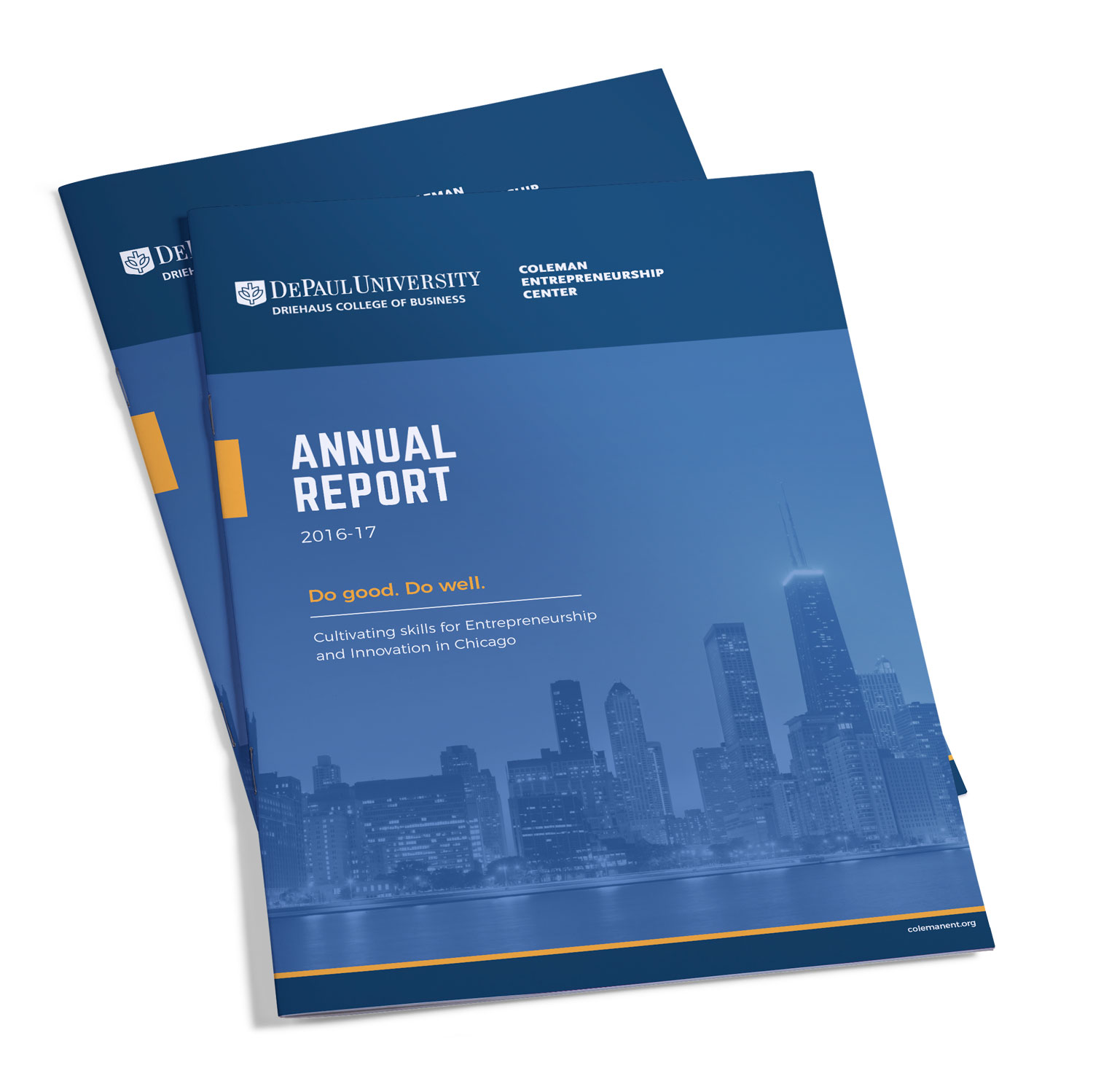 DePaul University Annual Report — Chicago, IL – Silver Egg